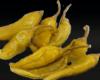 griechische Peperoni